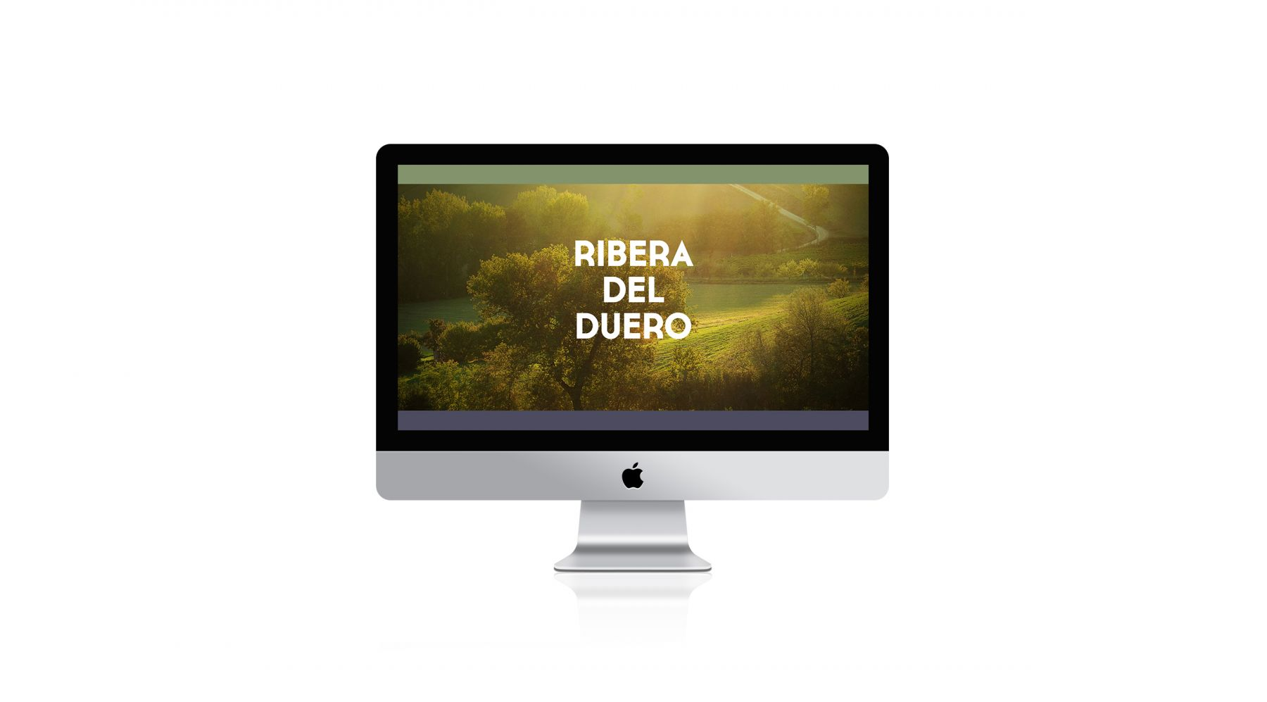 diseno-y-desarrollo-web-marketing-on-line